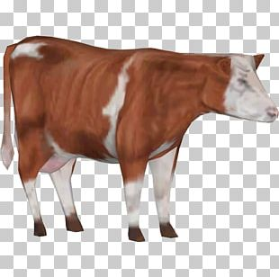 Zoo Tycoon 2 White Park Cattle Holstein Friesian Cattle Zebu Goat PNG