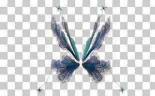 Rendering Fairy PNG