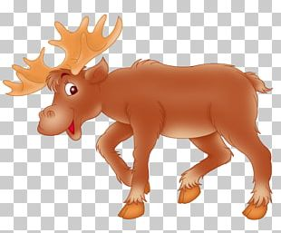 Moose Deer Child Elk PNG