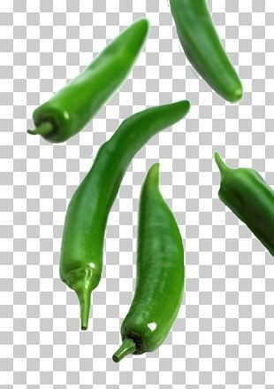 Serrano Pepper Birds Eye Chili Jalapexf1o Bell Pepper Cayenne Pepper PNG
