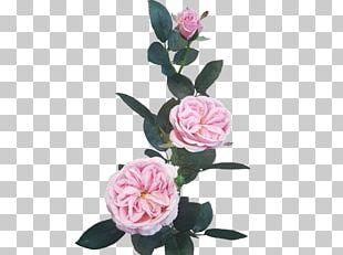 Cut Flowers Artificial Flower Garden Roses Floral Design PNG
