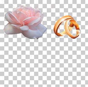 Marriage Ring Wedding PNG