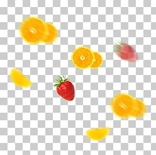 Orange Fruit Auglis PNG
