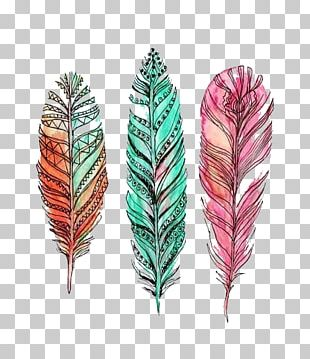 Feather Drawing Watercolor Painting PNG