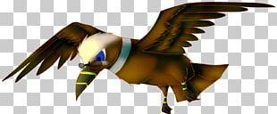 Parrot Bird Of Prey Beak Fauna PNG