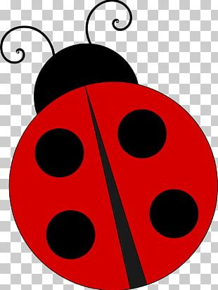 Free Content Ladybird PNG