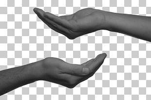 Non-profit Organisation Organization Language Interpretation Translation & Interpreting Thumb PNG