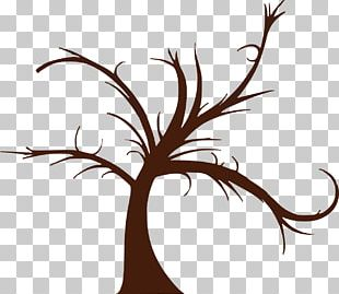 Family Tree Genealogy Wall Decal PNG