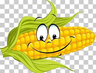 Corn On The Cob Maize Sweet Corn Food Vegetable PNG
