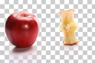 Apple Eating Icon PNG
