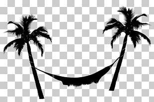 Hammock Arecaceae Coconut PNG
