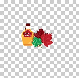 Maple Leaf PNG