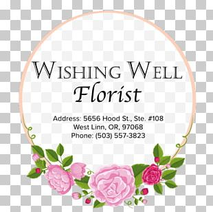 Rose Family Floral Design Cut Flowers Petal PNG