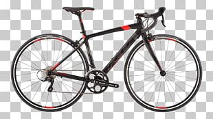 Specialized Bicycle Components Cycling Road Bicycle Bike Rental PNG