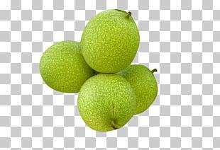 Walnut Peel Fruit PNG