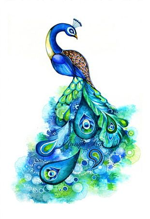 Watercolor Painting Peafowl Abstract Art PNG
