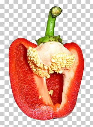 Bell Pepper Seed Chili Pepper Vegetable Avocado PNG