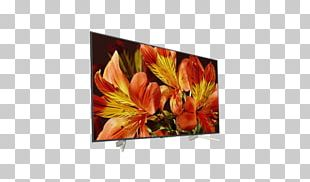 Sony XF8505 Sony X85F Smart TV 4K Resolution LED-backlit LCD PNG