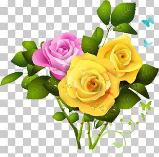 Rose Yellow PNG
