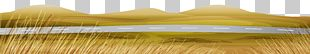 Yellow Brush Varnish PNG