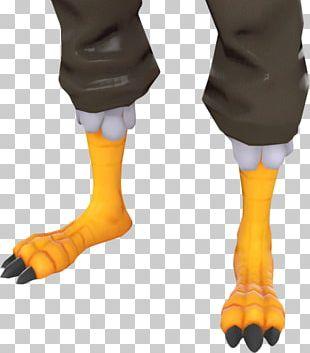 Team Fortress 2 Chicken Leg Bird PNG