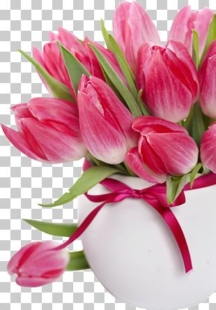 Tulip Flower Bouquet Floristry Cut Flowers PNG
