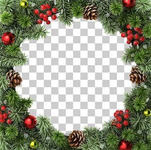 Christmas Tree Christmas Decoration Christmas Ornament Christmas Lights PNG