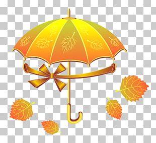 Umbrella Poster Euclidean PNG