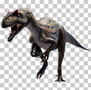 Allosaurus Tyrannosaurus Velociraptor 3D Dinosaur VR PNG