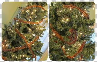 Christmas Tree Christmas Ornament Leaf Vegetable PNG
