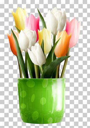 Flower Tulip Desktop PNG