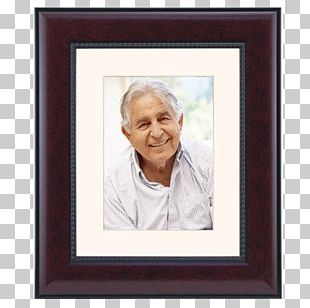 Portrait Stock Photography Frames PNG