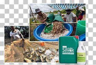 Plastic Food Water PNG