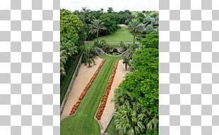 Fairchild Tropical Botanic Garden Botanical Garden Landscaping New Work PNG