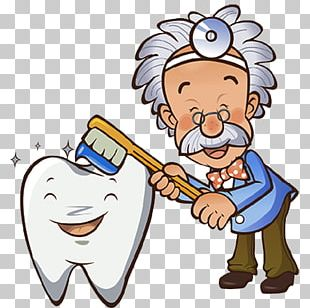 Tooth Brushing Dentistry Human Tooth Gums PNG