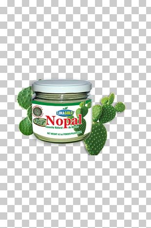 Nopal Cactaceae Powder Fruit PNG