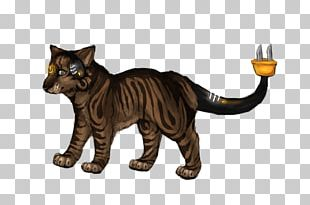 Whiskers Cat Fauna Tail Wildlife PNG