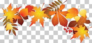 World Teachers Day Leaf Autumn PNG