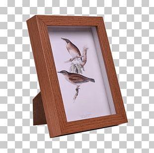 Paper Wood Frame PNG