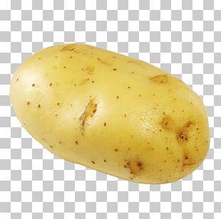 Russet Burbank French Fries Yukon Gold Potato Fast Food PNG