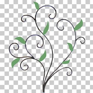 Bird Branch Twig Plant Stem Leaf PNG