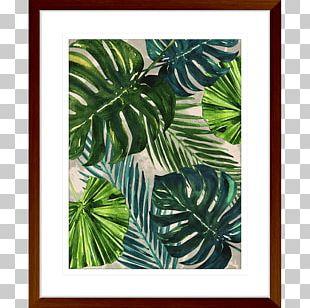 Frames Leaf Plant Tree Pattern PNG