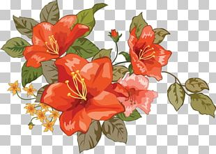 Flower Bouquet Raster Graphics PNG