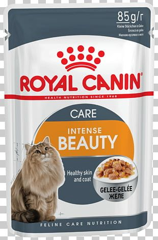 Royal Canin Sensitive Digestion Dry Cat Food Maine Coon Dog PNG