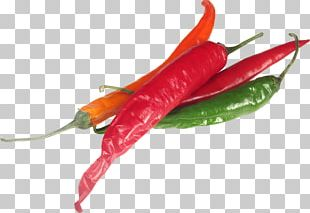 Bell Pepper Bird's Eye Chili Chili Pepper Serrano Pepper Piquillo Pepper PNG