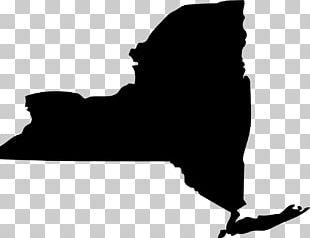 New York City U.S. State Organization Service Of Process New York State Senate PNG