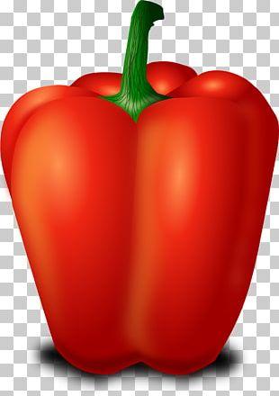 Chili Pepper Capsicum Bell Pepper PNG