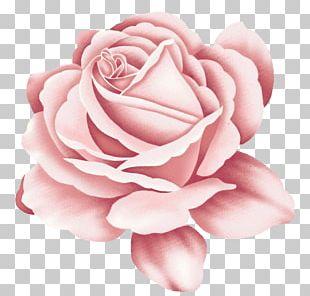Rose Tattoo Pink PNG