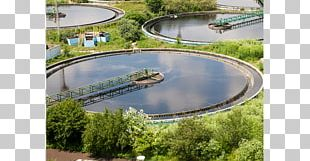Sewage Treatment Wastewater Sewage Sludge Water Purification Drinking Water PNG