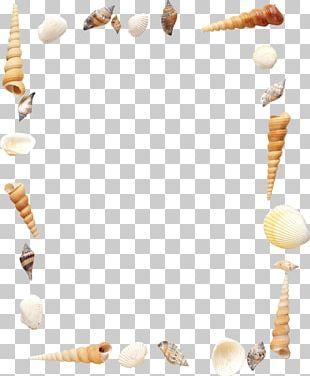 Celeste Frames Paper PNG